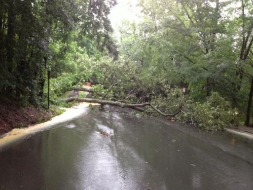@MayorMarkK - Tree down on Longview