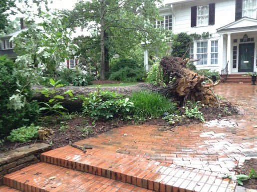 Emergency workers respond quickly to a downed tree at 719 Gimghoul Road. The tree blocked traffic for about three hours.