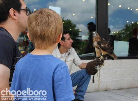Benjamin Franklin thinks Rahl, the red-tail hawk, is quite the educational ambassador