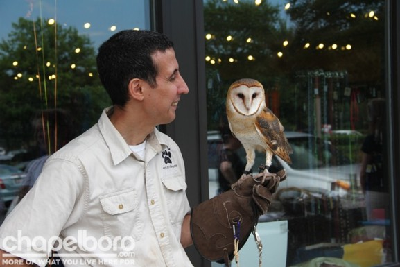 Vinny Mammome with Watoni the Barn Owl