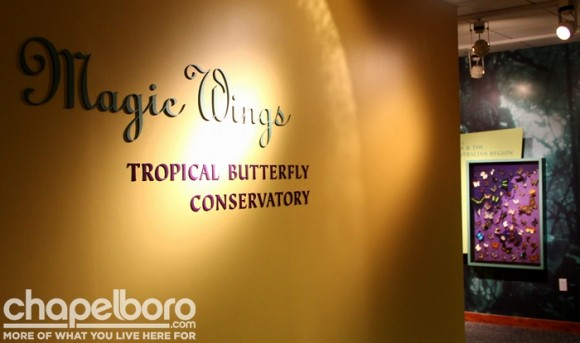 Throughout the evening, there were special nighttime tours of the Butterfly House