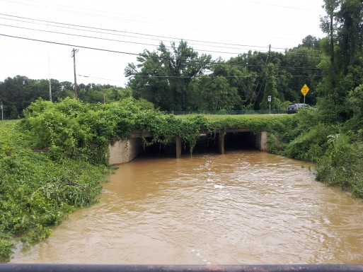 Eastgate bridge - The Creek runs under (and sometimes over) Eastgate - photo by Elizabeth Friend
