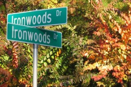 ironwoods neighborhood real estate
