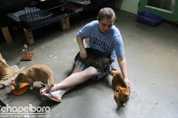 Volunteer Diana Hofler is quite popular with the cats at the Adoption Center!